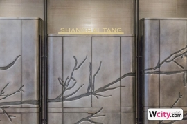 shanghai_tang_ss18_8