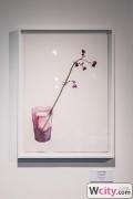 Une_fleur_par_jour_pour_lila_opening_party_6